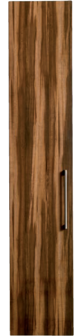 premier-plum-prunus-gloss